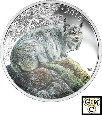 2016 'The Commanding Canadian Lynx' Color Prf $20 Silver 1oz .9999 Fine(17673)N!