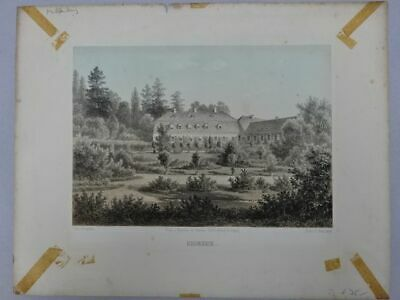 Lithographie - Krumbeck