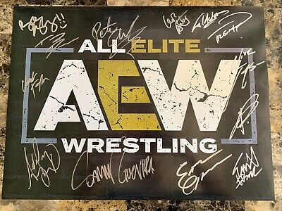 AEW All Elite Wrestling Official 18x24 Poster Signed By 13 Double Or Nothing