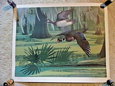 Signed Richard Sloan Limited Edition 1977 Mallard Duck Print Lithograph