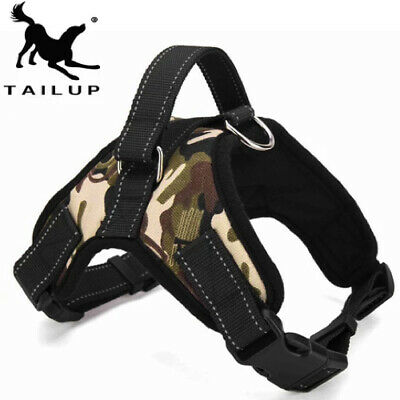 Award Winning Dog Harness
