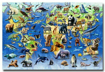 137055 Animals World Map Educational Wall Poster Print AU
