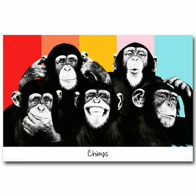 141538 The Chimps Funny Monkey Fac Wall Poster Print UK