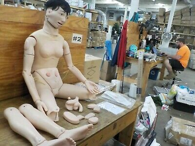 Training Manikin Model Mannequin Patient Education Teaching Model Female