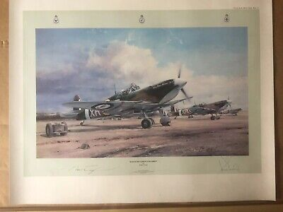 EAGLE SQUADRON SCRAMBLE Robert Taylor, 38 multi-signed RAF