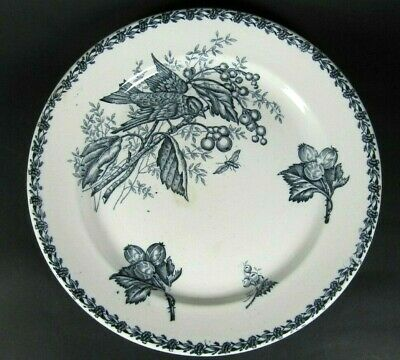 Large French Antique 19thC Transferware Platter Plate Victorian White Blue Bird