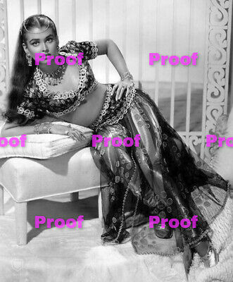 VINTAGE Hollywood Starlet SHOW GIRL BELLY Dancer Photo Photograph REPRINT 24