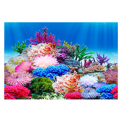 Aquarium Fish Tank Aquascape Stone Background Double Sided Creative Decoration H