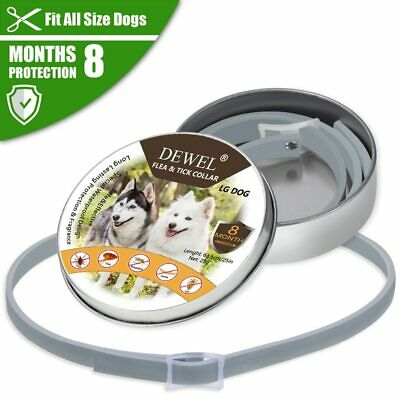 Bayer Seresto Flea and Tick Collar for Large Dogs up to 8 kg, Free shipping