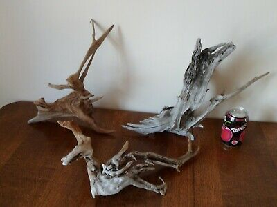 "Driftwood Pieces, x3  branching ""little tree"" shapes. viv, craft or table centre"