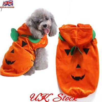 UK Pet Halloween Clothes Dog Funny Cat Costume Draping Pumpkin Pattern dog Coat
