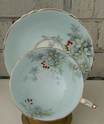 Paragon Vintage Tea Cup and Saucer Blue Hand Painted Double  Warrant
