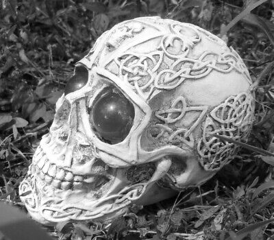"""Latex skull mold with plastic backup plaster or concrete mould  5.5"""" x 3.5"""" x 4"""""""