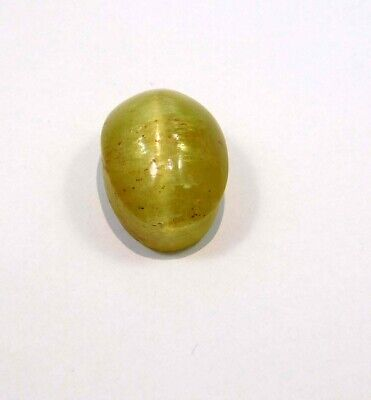 40 Cts. 100% Natural Cat's Eye Loose Cabochon Gemstone NG21538