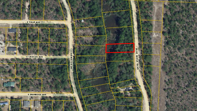 Florida Land Investor 5 X Lots Walton County and Flagler County FL! Must Sell!!!