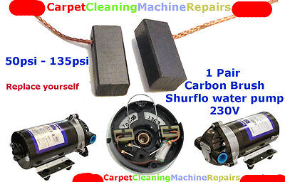 GENUINE CARBON BRUSHES for Shurflo water pump 50-135psi Carpet Cleaning Machine