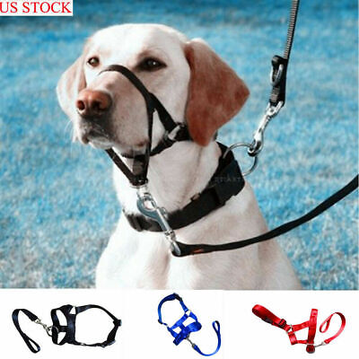 Dog Pet Head Collar Gentle Halter Leash Leader No Pull Straps for Training Dogs/