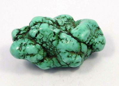 Lab-Created Turquoise Tumbles Rough Mineral Specimen 205 CT 49x31x22mm NG14628