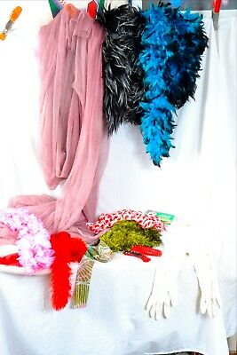 Feather boa, vintage white gloves, photo prop kit great items!!