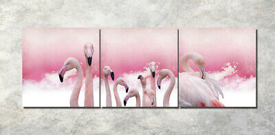 Framed Photo Painting Canvas Pink Flamingo Background Abstract Art Wall Decor