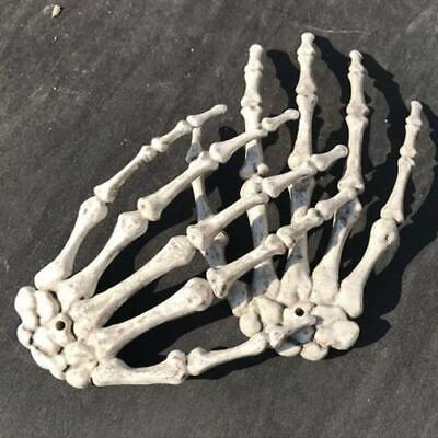 Halloween Skull Skeleton Human Hand Bone Zombie Party Terror Adult Scary Props !