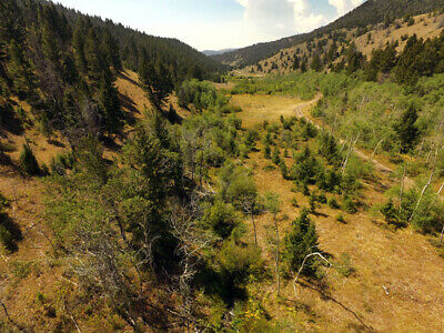 Montana Placer Gold Mining Claim Trout Creek Mine Nugget Sluice Snipe Placer MT