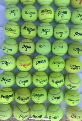 100 used DINGY hard court tennis balls