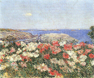 Poppies On The Isles Of Shoals By Hassam Artist Painting Oil Canvas Repro Art