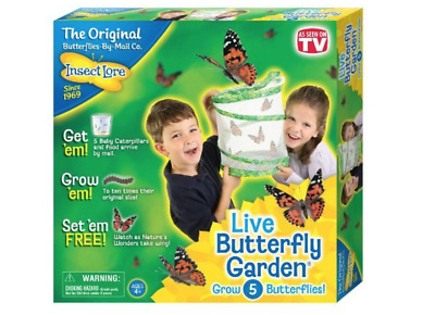 INSECT LORE LIVE BUTTERFLY GARDEN - Science Educational Toy Kit