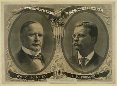 For President,William McKinley,Vice President,Theodore Roosevelt,Politcian 2196