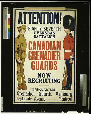 CANADIAN GRENADIER GUARDS Now Recruiting VINTAGE WAR Military Poster 24x36