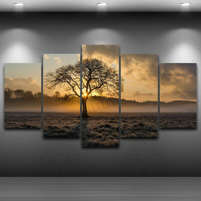 5Pcs/set Unframed Oil Painting Picture Abstract Art Canvas Print Home Wall Decor