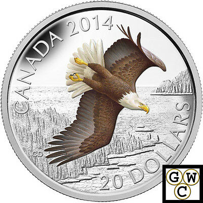 2014 Soaring Bald Eagle Colorized $20 Silver Coin 1oz 9999 Fine  (13914)
