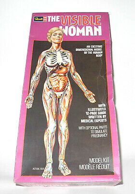 Vintage Modellbausatz Revell Visible Woman 1977