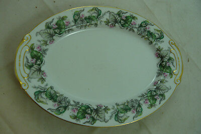 """Craftsman Fairy Blossoms Japan Floral China 12"""" Oval Serving Platter Plate"""