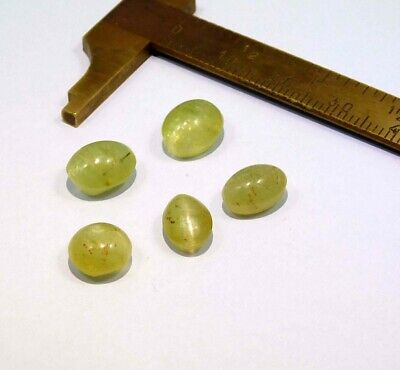 18 Cts. 100% Natural Lot Of Cat's Eye Loose Cabochon Gemstone NG21553