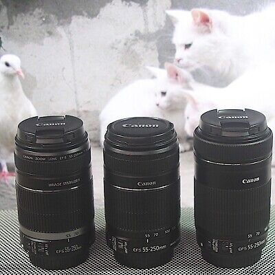 Canon EF-S 55-250mm f/4-5.6 IS, IS II or IS STM Lenses, choose one