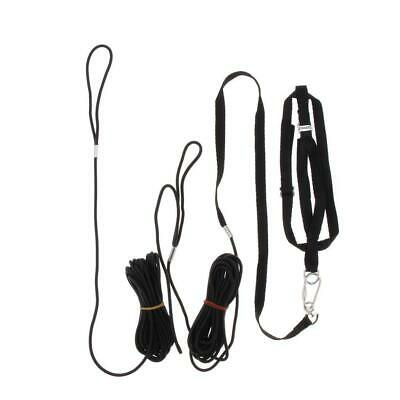 Outdoor Parrot Leash Adjustable Bird Harness For Small to Large Birds Black