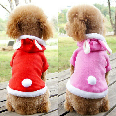 2019 House Fashion Pet Dog Coats Jacket Funny Winter Clothes Puppy Cat Hooded Co