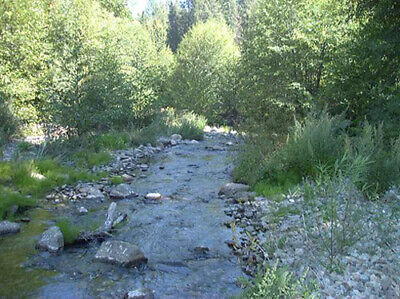 Creekside Property  - 1.68 Acres Meadow Valley