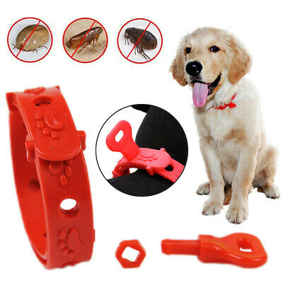 3 Month Protection Flea & Tick Collar Anti Insect for Pet Dog Cat Adjustable