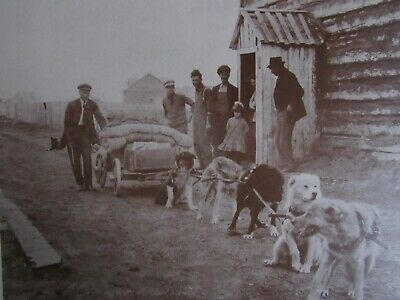 1800'S Northern Canadian Aboriginal Fort Resolution Husky   Photo Print 14 X 11
