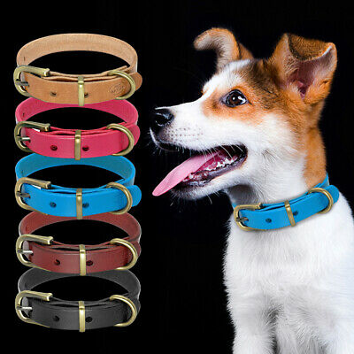 Dog Collars for Medium Dogs Soft Leather Puppy Dog Collar with Heavy Gold Buckle