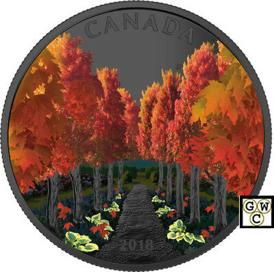 2018 'Maple Tree Tunnel' Colorized Proof $20 Silver Coin 1oz .9999 Fine(18544)NT