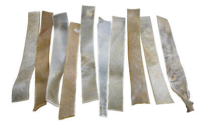 Good Boy Flat Strips Chewy Rawhide Dog Treats Snack Pet Supplies 10 Strips Pack