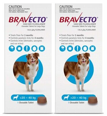 BRAVECTO Chewable Tablet for Large Dogs 20-40kg 1 chew x 2pk