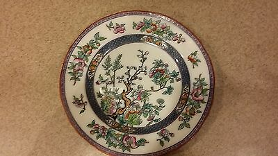 ANTIQUE VERY EARLY Minton Indian Tree Dinner Plate, England PRE GOLD VERY RARE