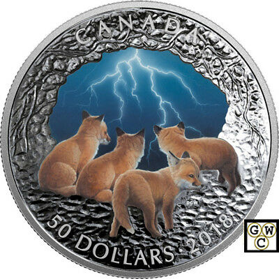 2018 'Stormy Night -Nature's Light Show' $50 Silver Coin 5oz .9999 Fine(18553)NT