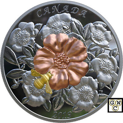 2019 'The Bumble Bee and the Bloom' $50 Silver Coin 5oz .9999 Fine (18608) (NT)
