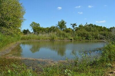 ** Beautiful 9.82 ACRES $99,000**